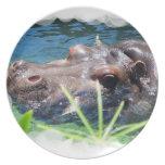 Placa hambrienta del hipopótamo plato para fiesta