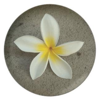 Placa hawaiana de la flor del solo plumeria platos de comidas