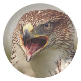 Placa hermosa del halcón de Lanner Platos De Comidas