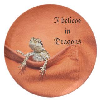 placa impresionante para la fan barbuda del dragón platos
