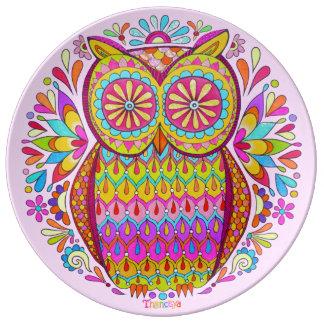 Placa maravillosa colorida de la porcelana del búh plato de cerámica