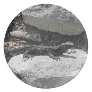 Placa mexicana de la ruina de la iguana platos