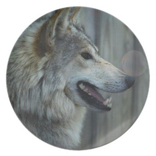 Placa mexicana del lobo platos