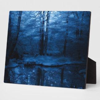 placa nevosa oscura de la foto de maderas