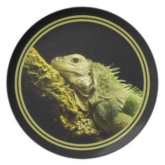 Placa noble de la iguana plato de cena
