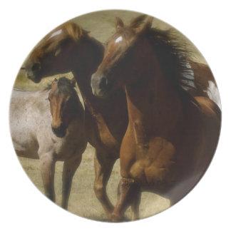 Placa occidental de los caballos plato de cena