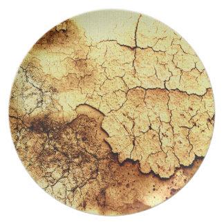 Placa orgánica del diseñador de las texturas de la plato para fiesta