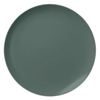 Placa oscura de la verde lima I Plato De Comida