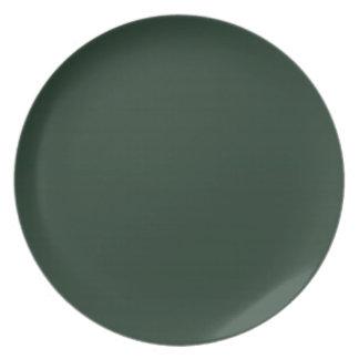 Placa oscura de la verde lima II Plato Para Fiesta