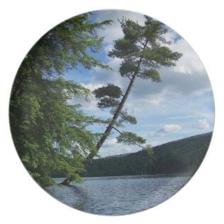 Placa pacífica de la escena de Vermont Platos