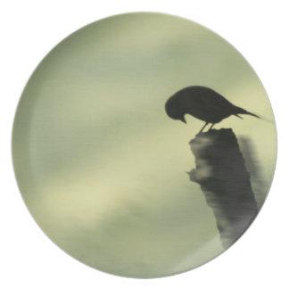 Placa pasada del tributo del pájaro platos
