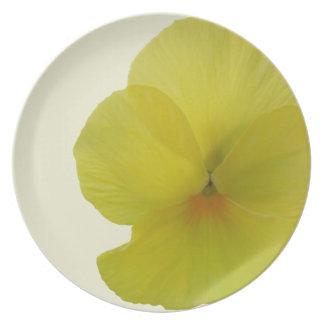 Placa - pensamiento barbudo del limón plato