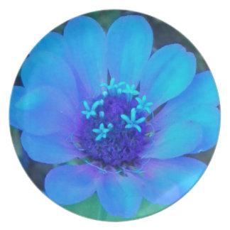 Placa púrpura azul del Zinnia de n Platos De Comidas