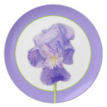 Placa púrpura del iris plato para fiesta