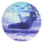 Placa que practica surf de la cometa platos para fiestas