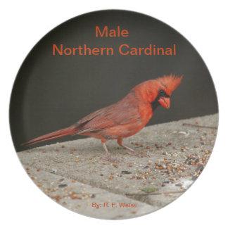Placa que representa al cardenal septentrional de plato