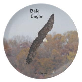Placa que representa Eagle calvo en vuelo. Plato