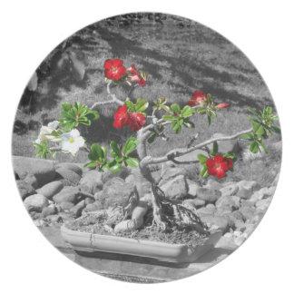 Placa roja, blanca y verde de los bonsais plato para fiesta