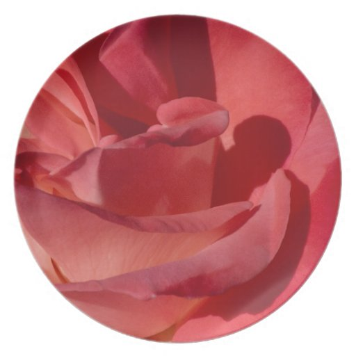 Placa roja de la flor plato de comida