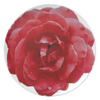 Placa - rosa rojo rojo plato de comida