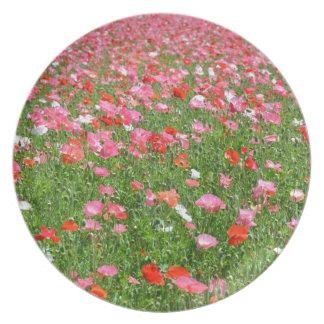 Placa rosada bonita del estampado de flores de la  plato para fiesta