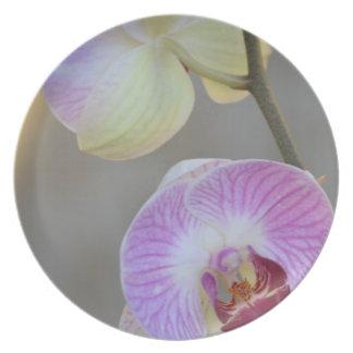 Placa rosada de la expresión de la orquídea platos de comidas
