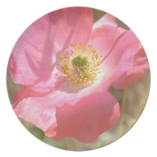 Placa rosada de la flor de la amapola plato de comida