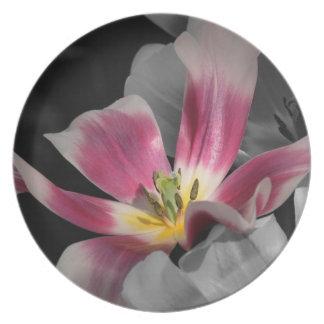 Placa rosada de la flor platos de comidas