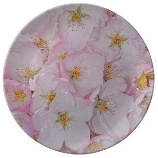 Placa rosada de la porcelana de las flores de platos de cerámica