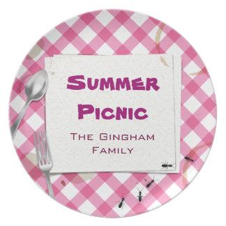 Placa rosada del Bbq de la comida campestre de la  Plato Para Fiesta