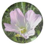 Placa rosada del decorador de la flor platos de comidas