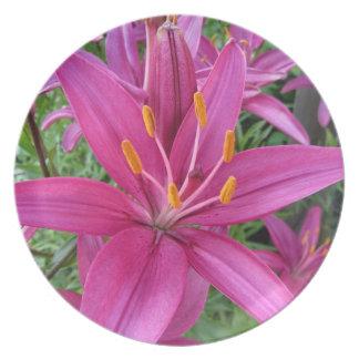 Placa rosada del lirio tigrado platos