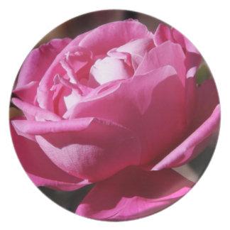 Placa rosada del satén plato