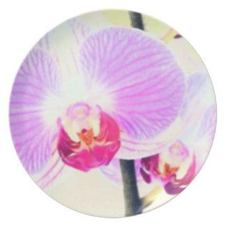 Placa rosada pintada de la orquídea platos de comidas