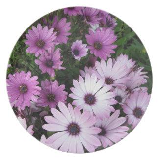 Placa rosada y púrpura de las flores platos