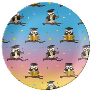 Placa sabia del modelo de los búhos plato de cerámica