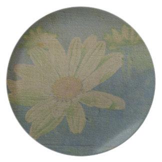 Placa salvaje del azul de la margarita platos de comidas
