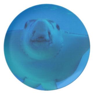 Placa subacuática de la pastinaca platos