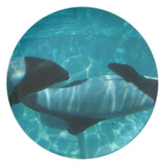 Placa subacuática de las ballenas platos