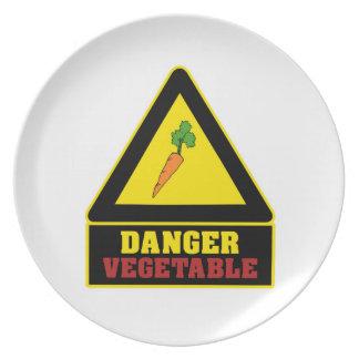 Placa vegetal del fiesta del peligro blanco plato de comida