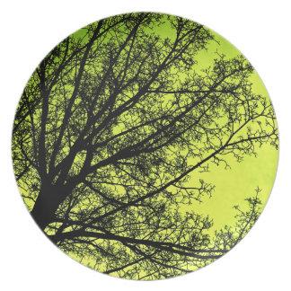 Placa verde de la silueta del árbol plato