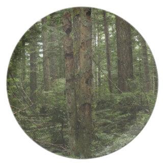 Placa verde de los Naturaleza-amantes del bosque d Plato De Comida