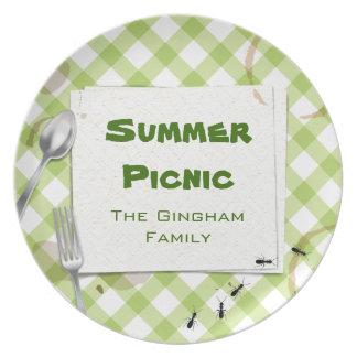 Placa verde del Bbq de la comida campestre de la g Plato De Comida