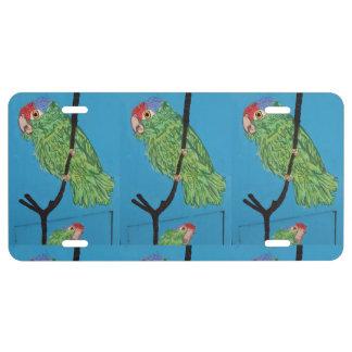 placa verde del personalizado de los loros placa de matrícula
