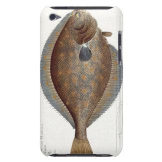 Placa XLII de la platija (Pleuronectes Platessa) d Barely There iPod Fundas