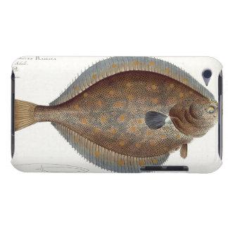 Placa XLII de la platija (Pleuronectes Platessa) d Case-Mate iPod Touch Funda