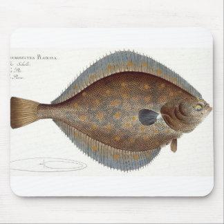 Placa XLII de la platija (Pleuronectes Platessa) d Alfombrillas De Ratón