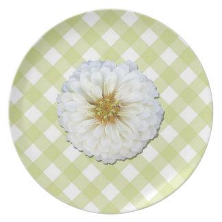Placa - Zinnia blanco en enrejado Platos