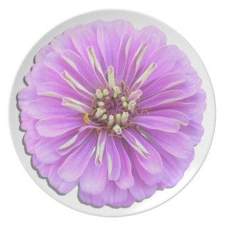 Placa - Zinnia de la lila Platos Para Fiestas