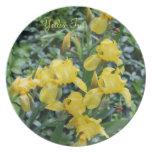 Placas de cena del jardín del iris amarillo plato para fiesta